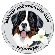 Bernese Mountain Dog Club of Ontario